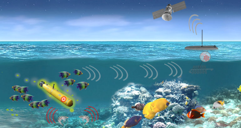 DARPA's PALS Aims at Detecting Undersea Activity Thanks to Marine Organisms