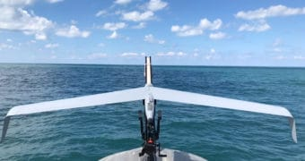 Elbit Systems Integrates a mini-UAS Onboard the Seagull USV