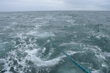 SEA completes successful trials of KraitArray in the English Channel